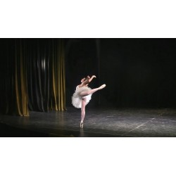 Escuela Sudamericana de Ballet en Floresta