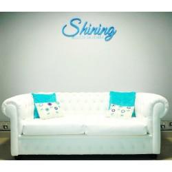Centro de estetica Shining en Nuñez